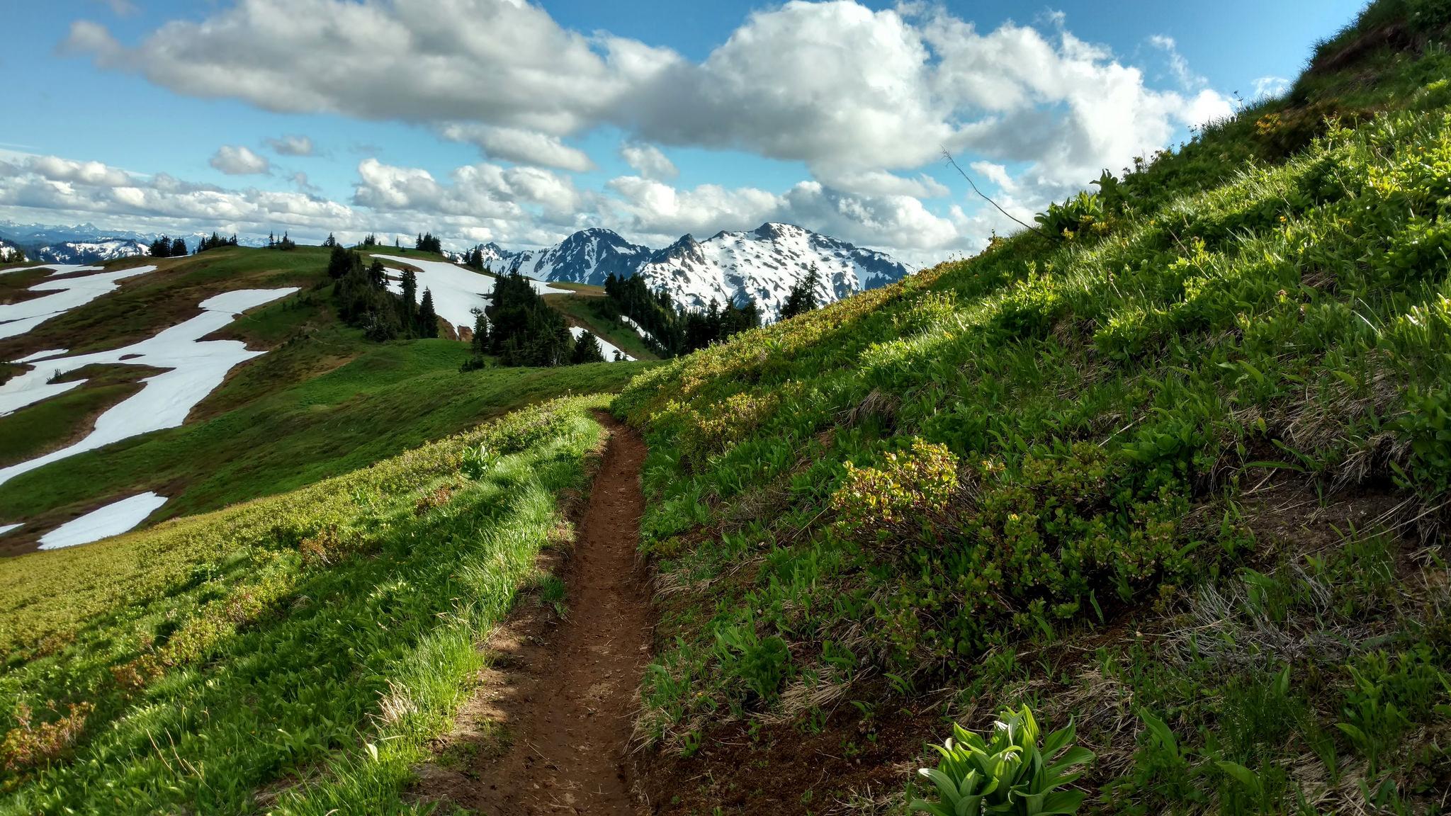 Foam Creek Trail by Grant Roush