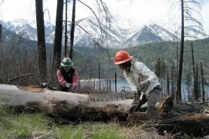 Volunteers crosscut a fallen tree at Lake Chelan. Photo by Pam MacRae.