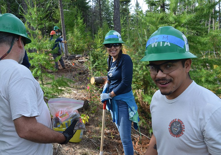 Frequently Asked Questions About Trail Work Parties Washington Trails Association