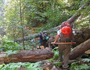 Quartz Creek trail problems