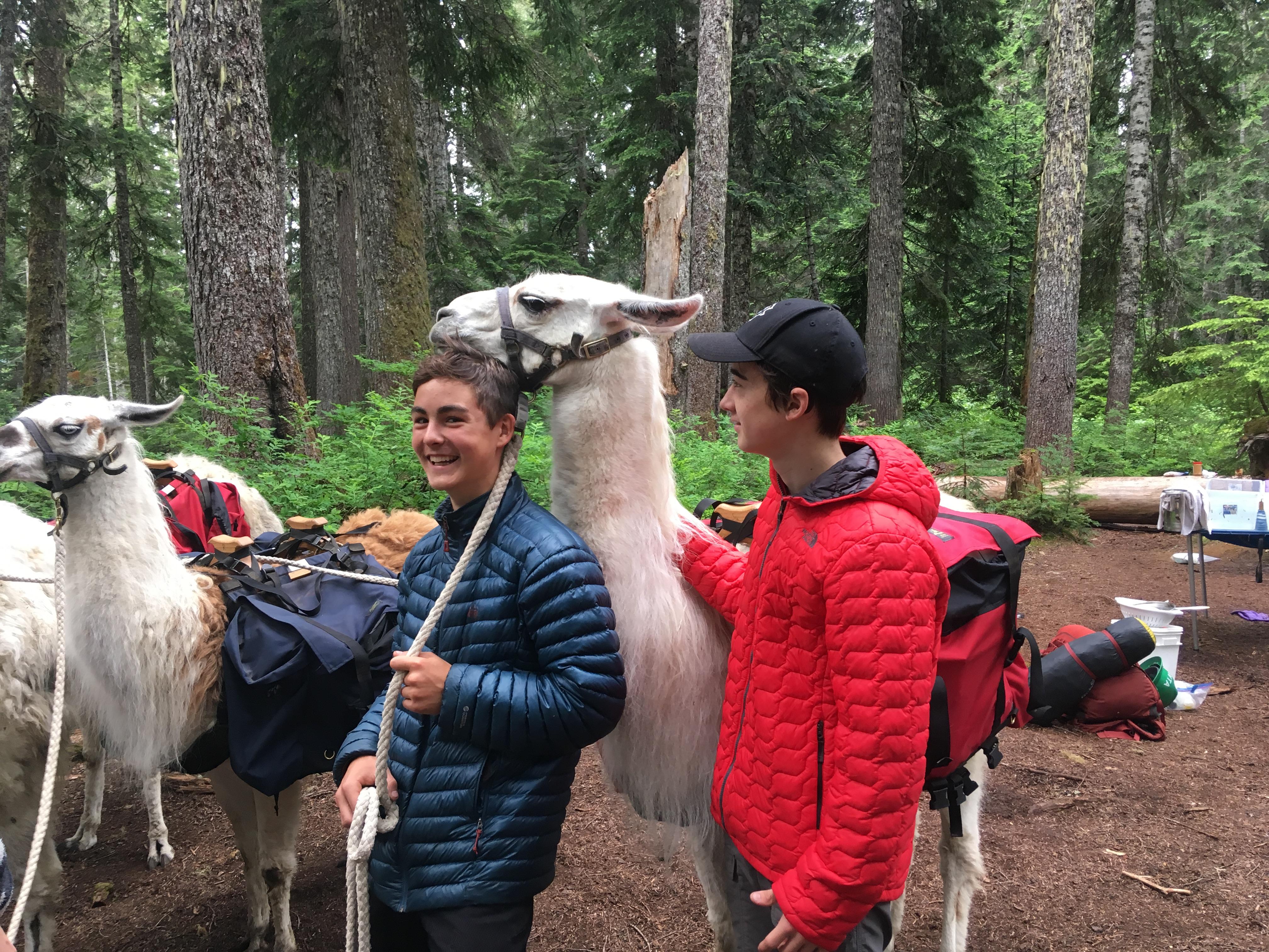 Youth Llama 2019