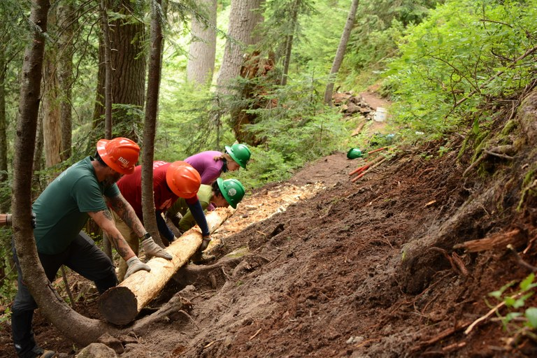 Volunteers work together to build up the trail's edge. Photo by Jessi Loerch.