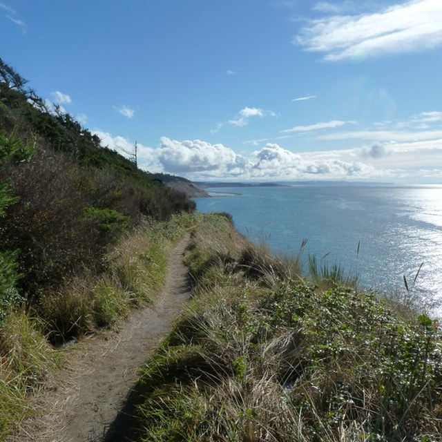 Bluff Trail at Fort Ebey State Park