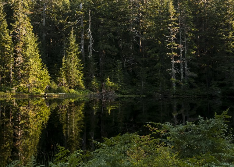 ashland lakes _ mtpilchuck nrca  Paul Wolman.jpg