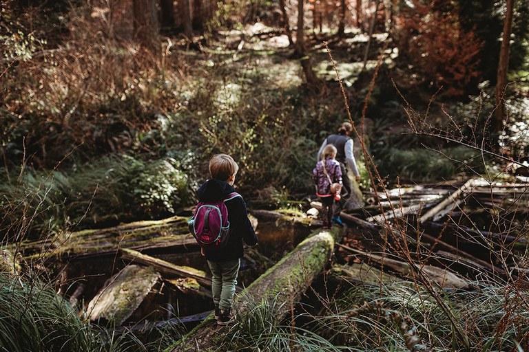 Kids walking on logs. Photo by Anastasia Novosyolova.