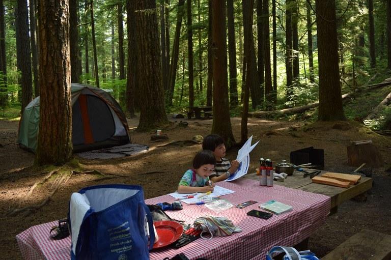 ohanapecosh campground_chen yen goh.jpg