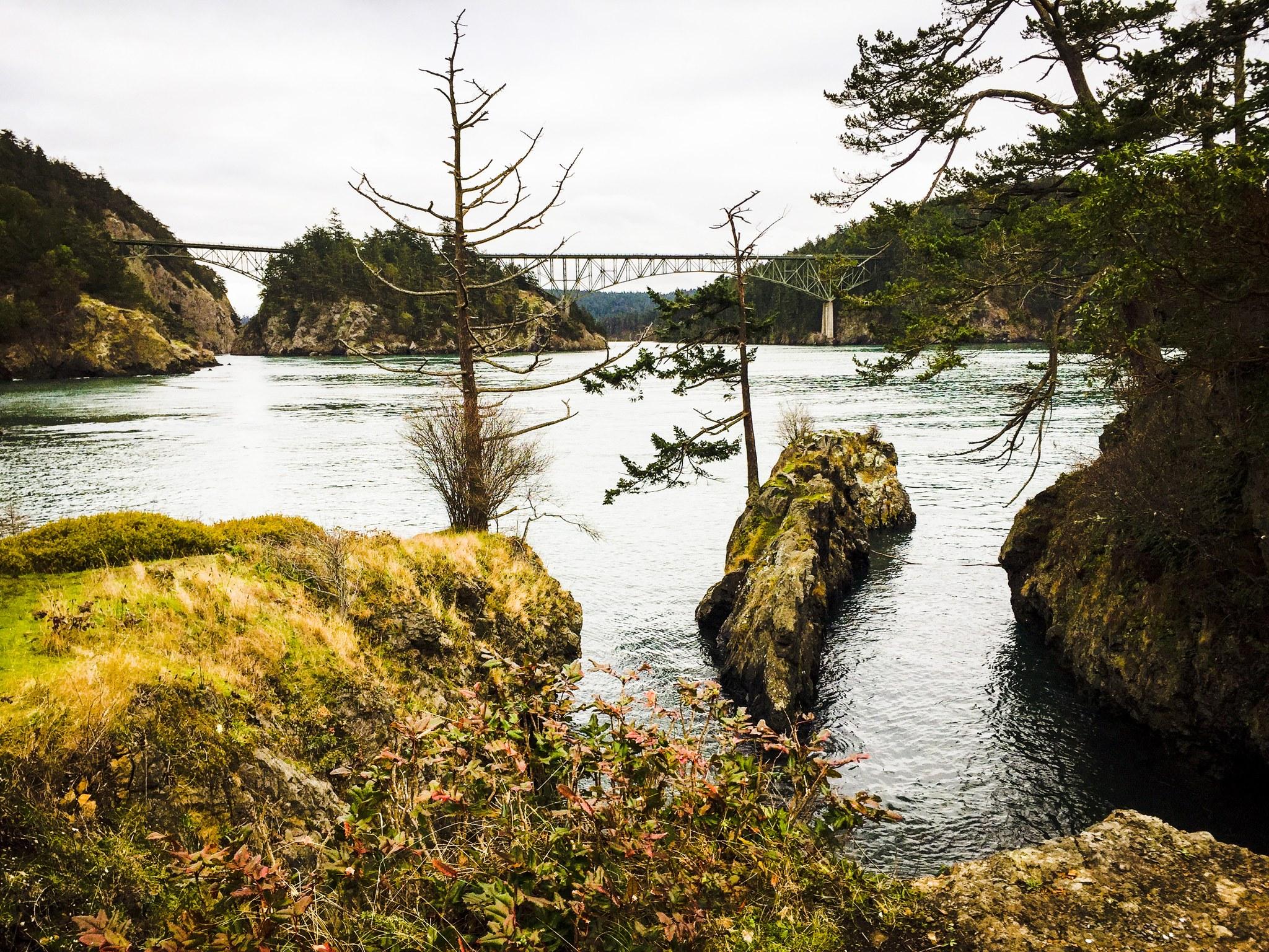 Winter Hikes with Kids — Washington Trails Association