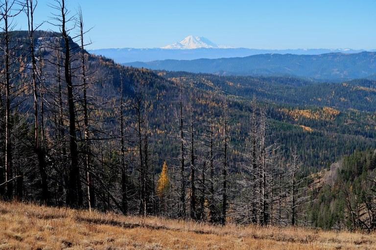 Tronsen Ridge Photo by LuBlair.jpeg