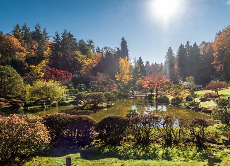 Washington Park Arboretum Photo by Hiking Nerds.jpeg