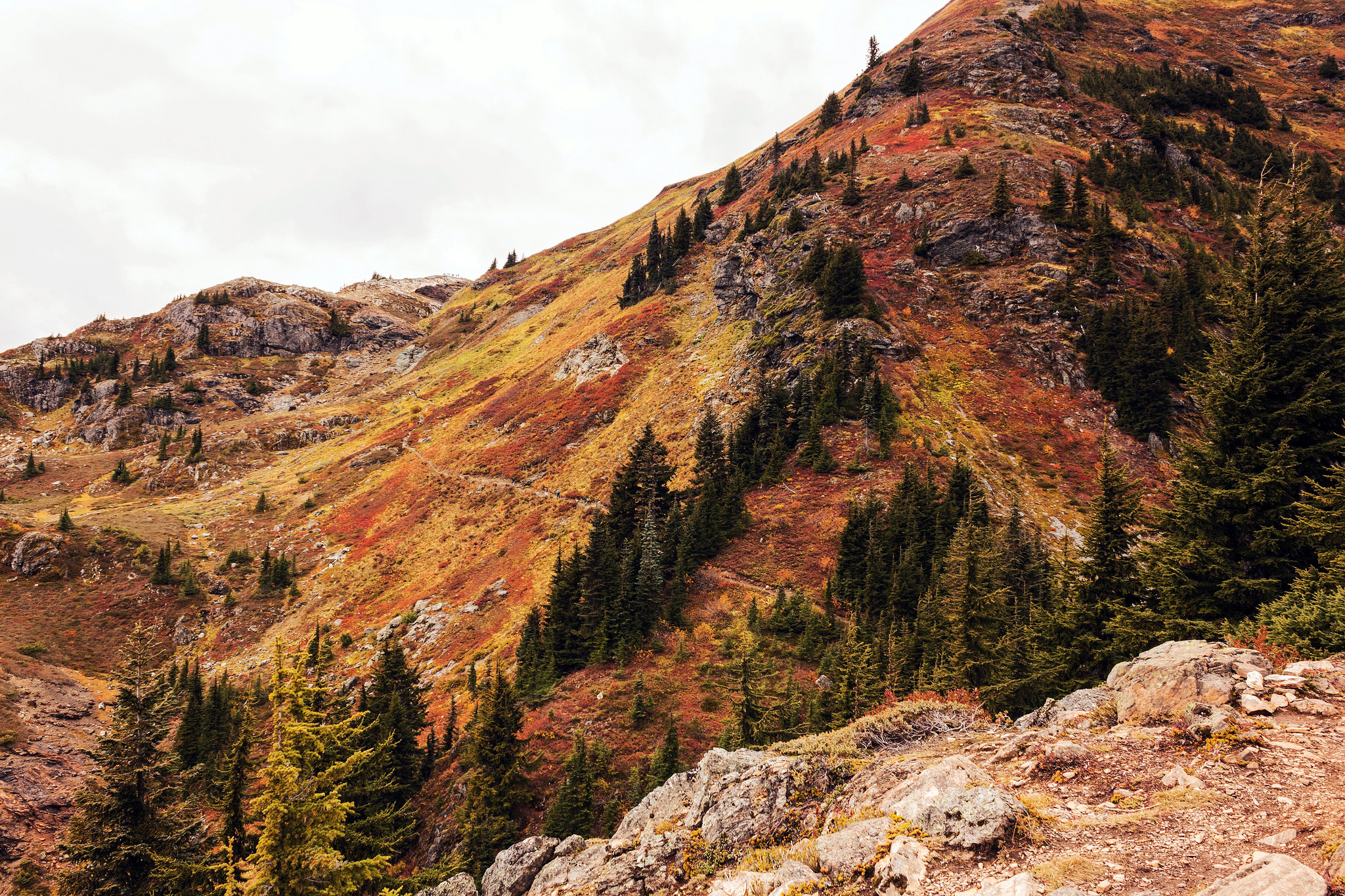 Breathtaking fall colors at Yellow Aster Butte. by Julia Anderson, Bellingham, WASHINGTON.jpg