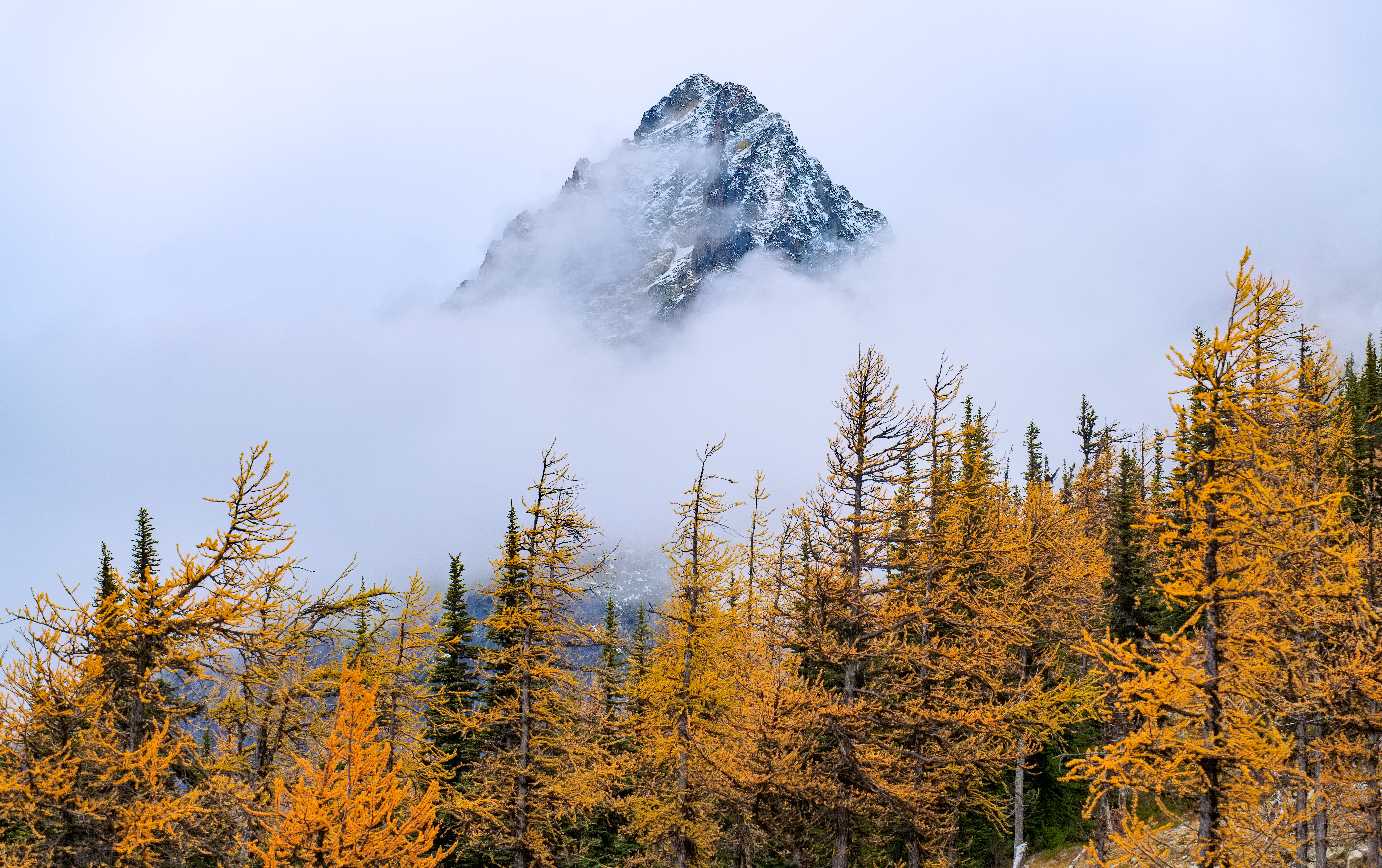 Fall has arrived in the North Cascades. by Jason Prater, Shoreline, WA.jpg
