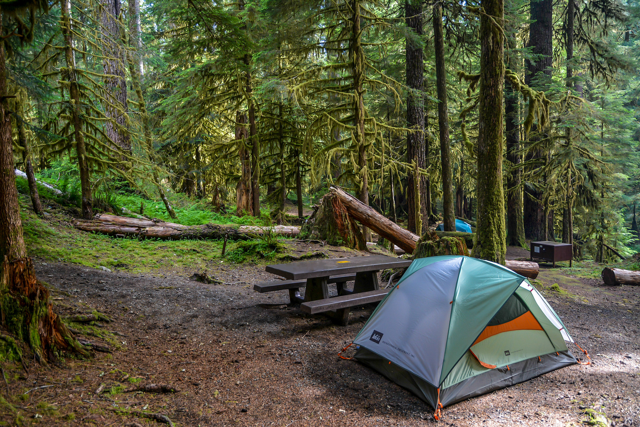 camping ONP by Maria Dominguez.jpg