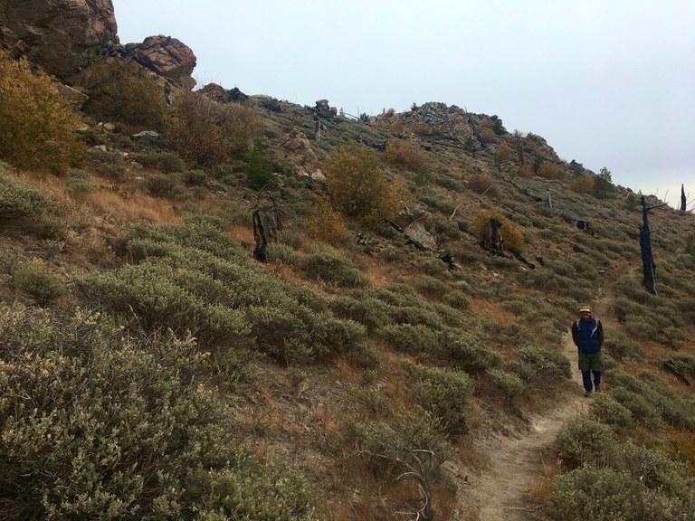Heading down the Chelan Ridge Trail. Photo by Kyle Pomraning.