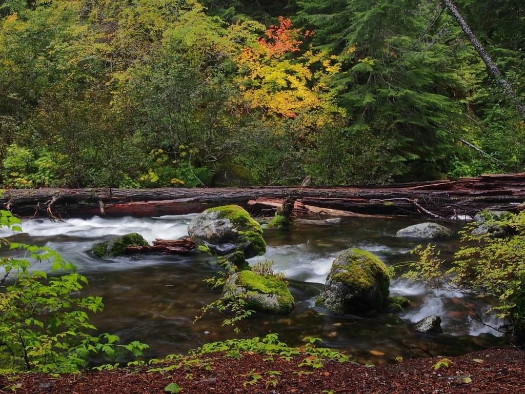 Huckleberry Creek-9.28.2013-Bob and Barb.jpeg