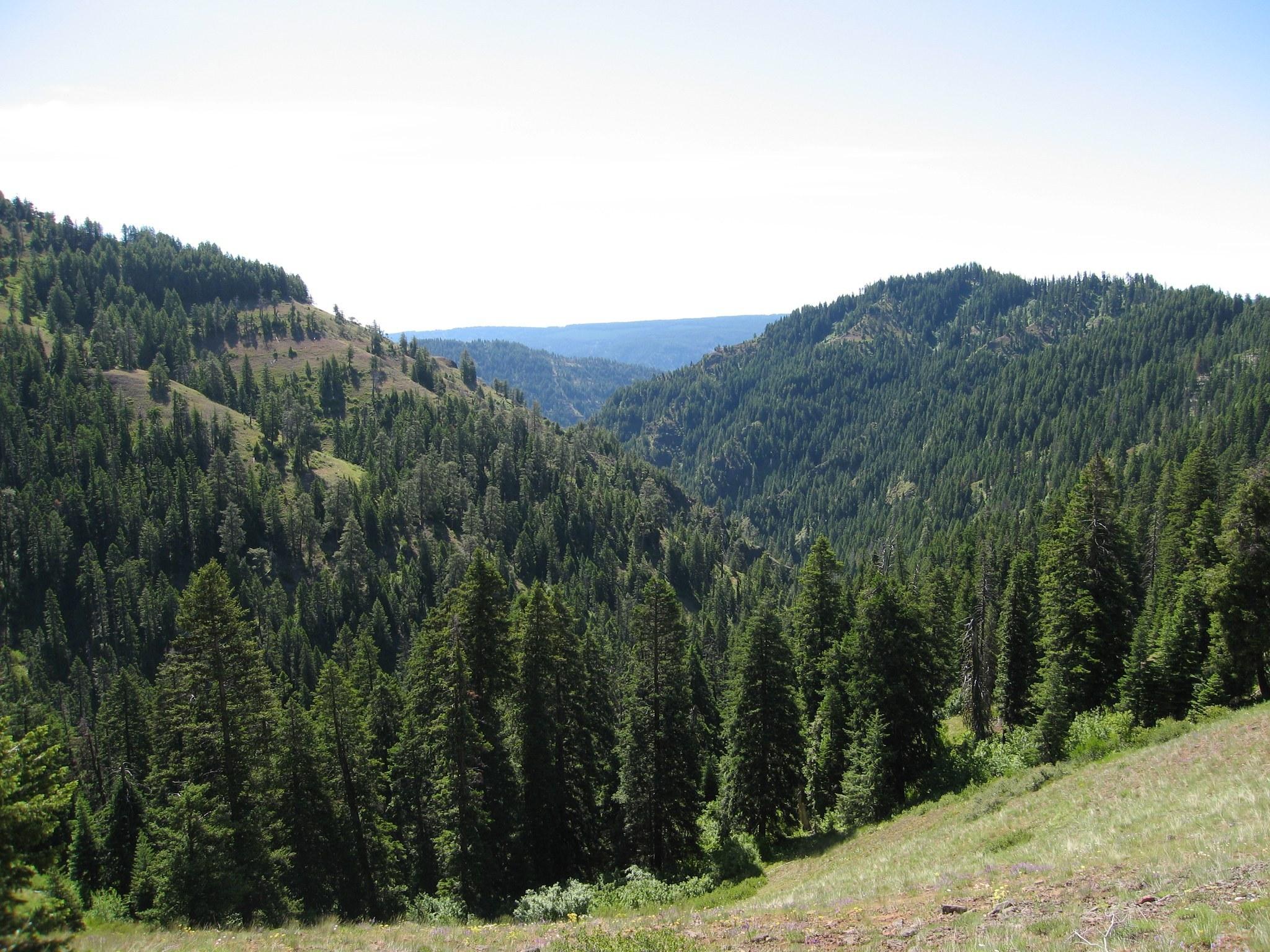 Sawtooth Ridge Luke Bakken.jpeg