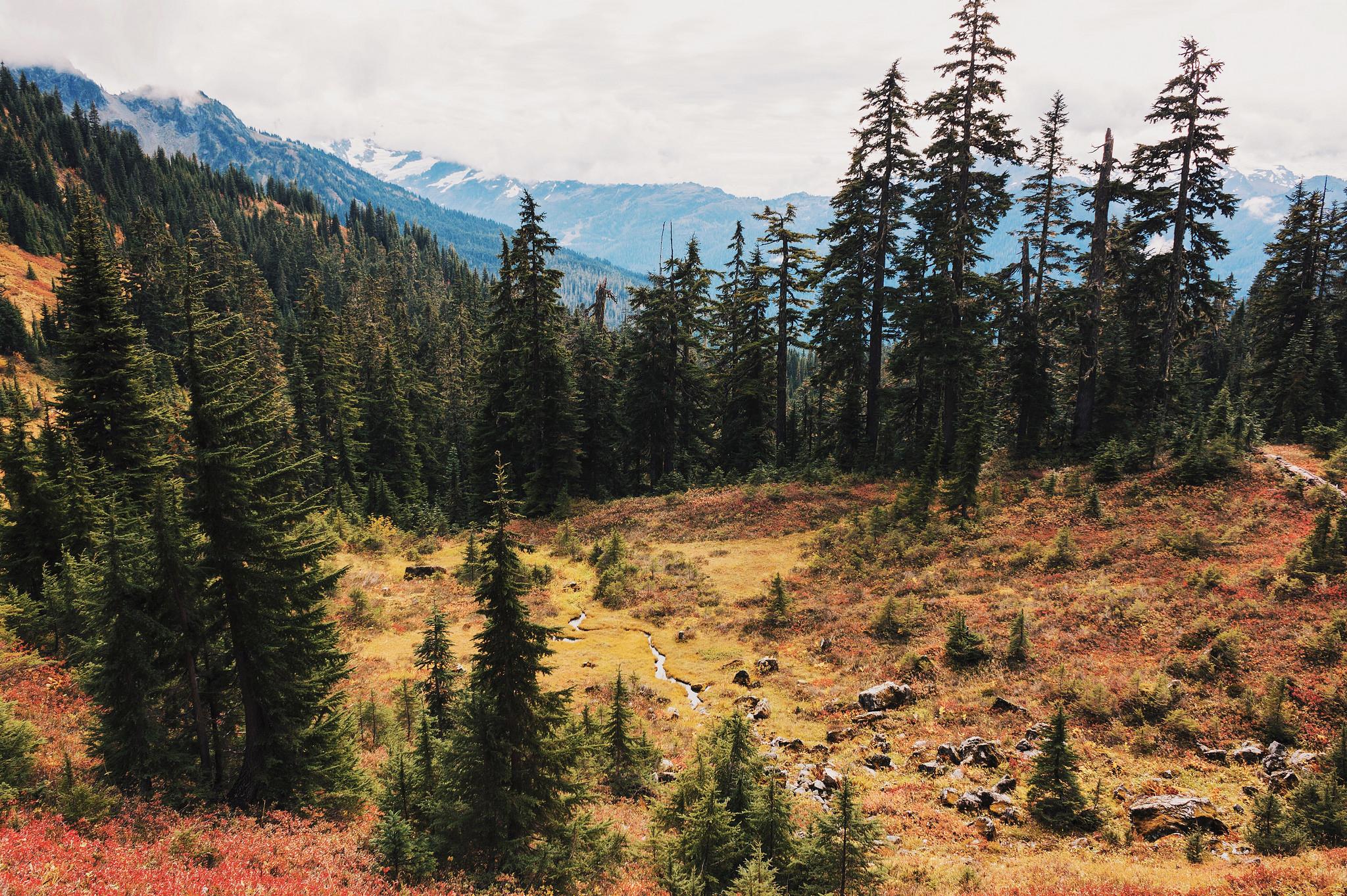 Finding Fall Hikes — Washington Trails Association
