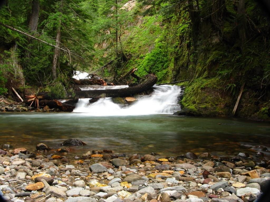 The small falls at Straight Creek