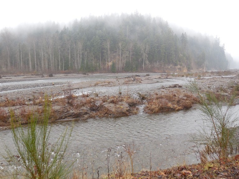 The Carbon River along the Foothills Trail. Photo by Al.