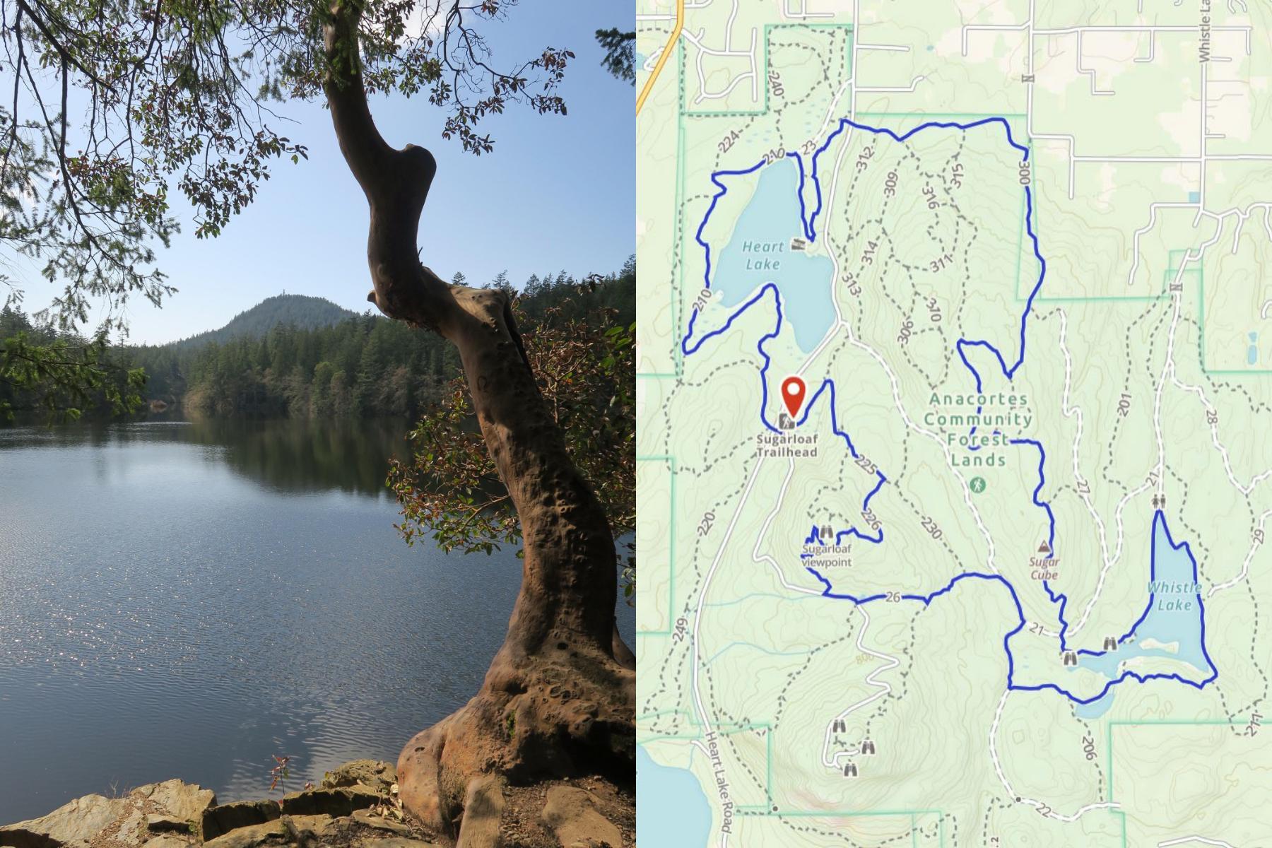 Anacortes Community Forest