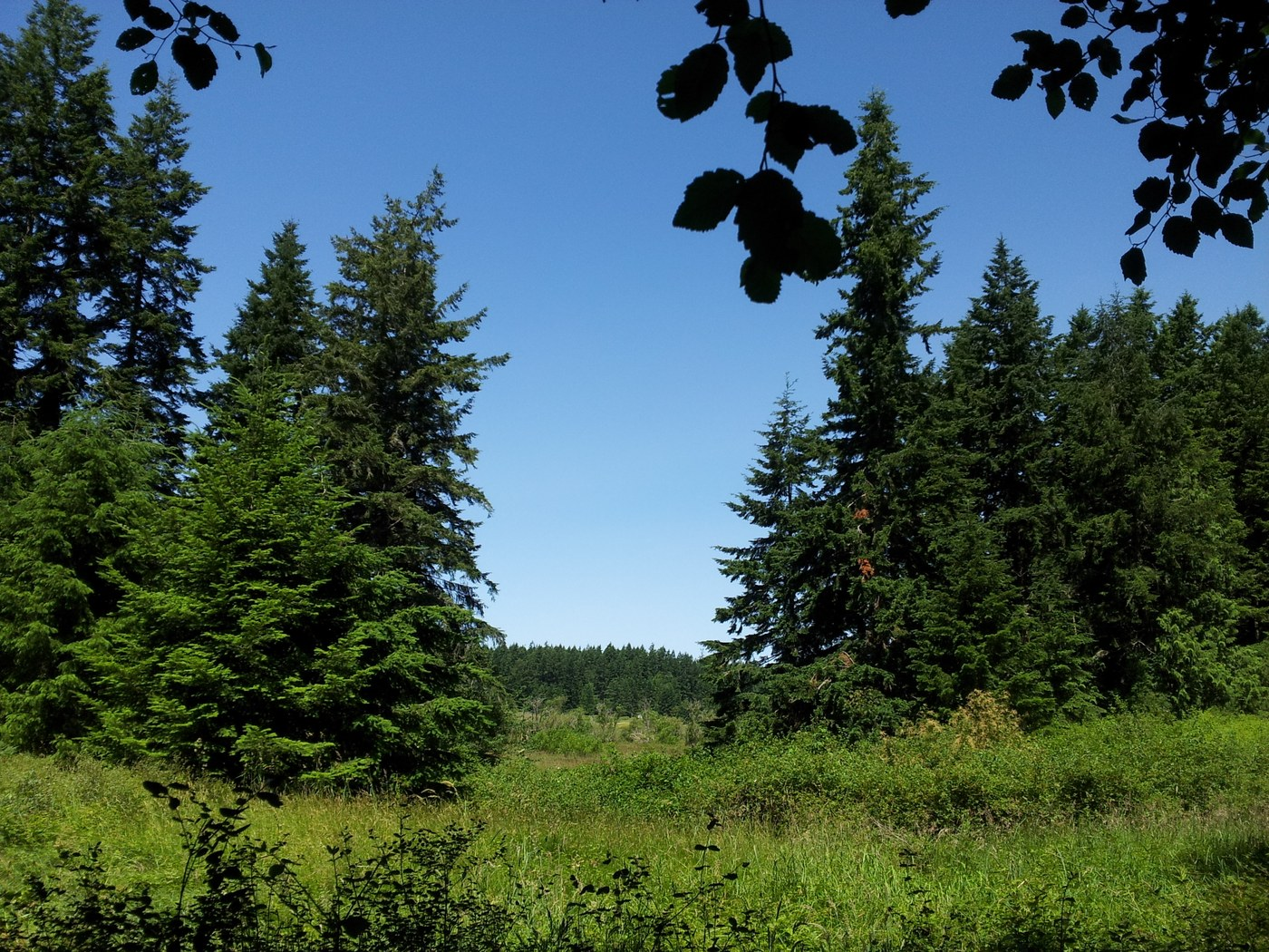 Anderson Lake State Park. Photo by batman and wakerobin..jpeg