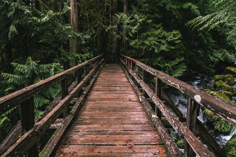 Beautiful bridge on the East Bank Baker Lake Trail. Photo by jaysonk.