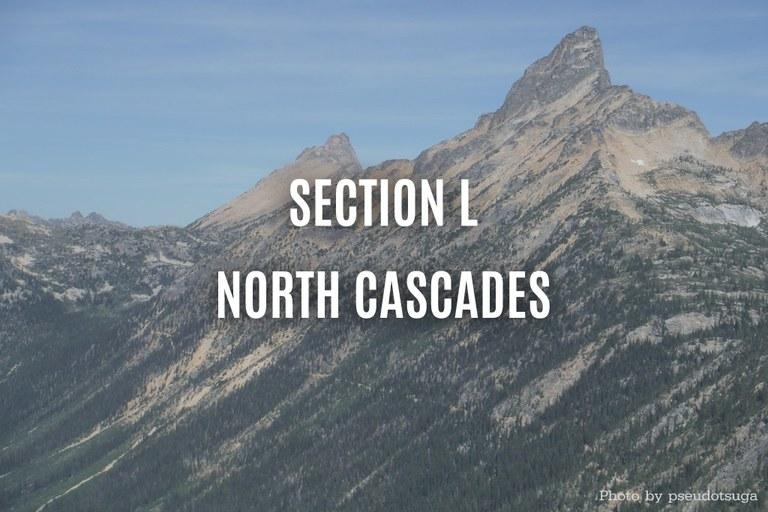 north-cascades-psuedotsuga.jpg