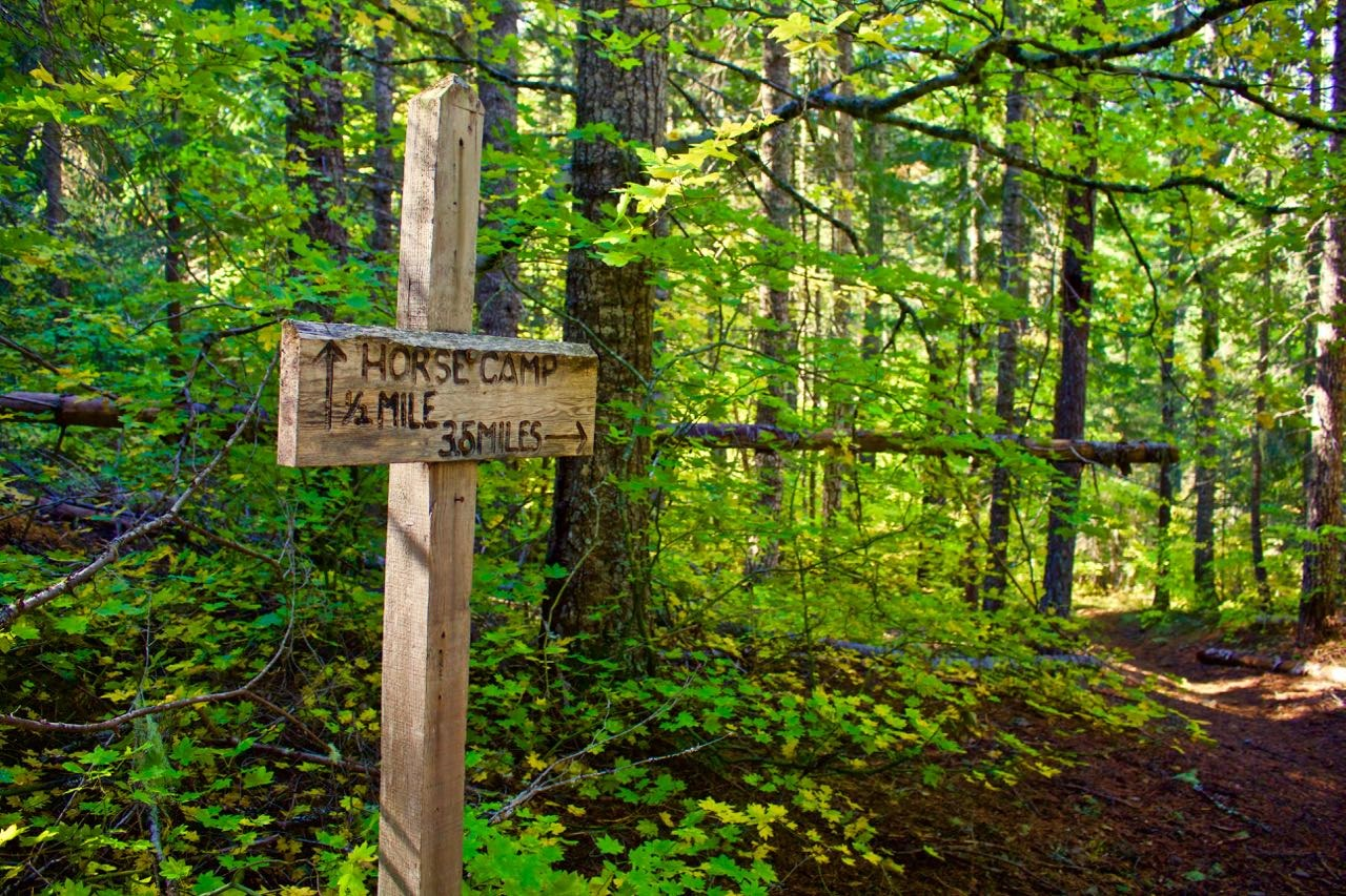A sign along the Buck Creek Trail. Photo by Elementalll.