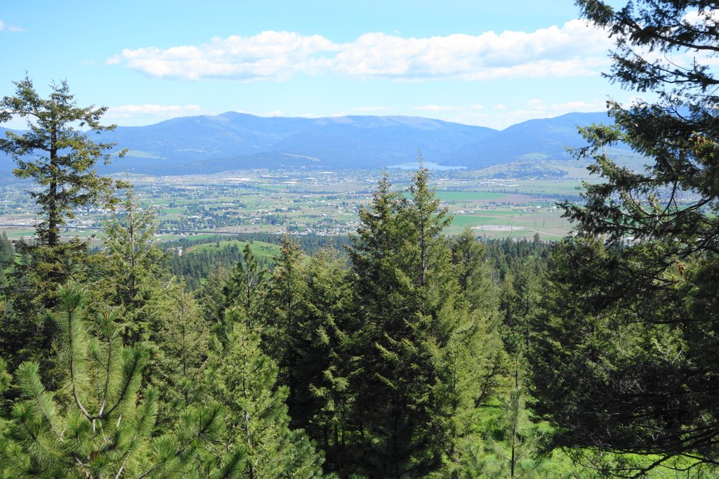 Antoine Peak Conservation Area-5.21.2017-Daniel Y.jpeg