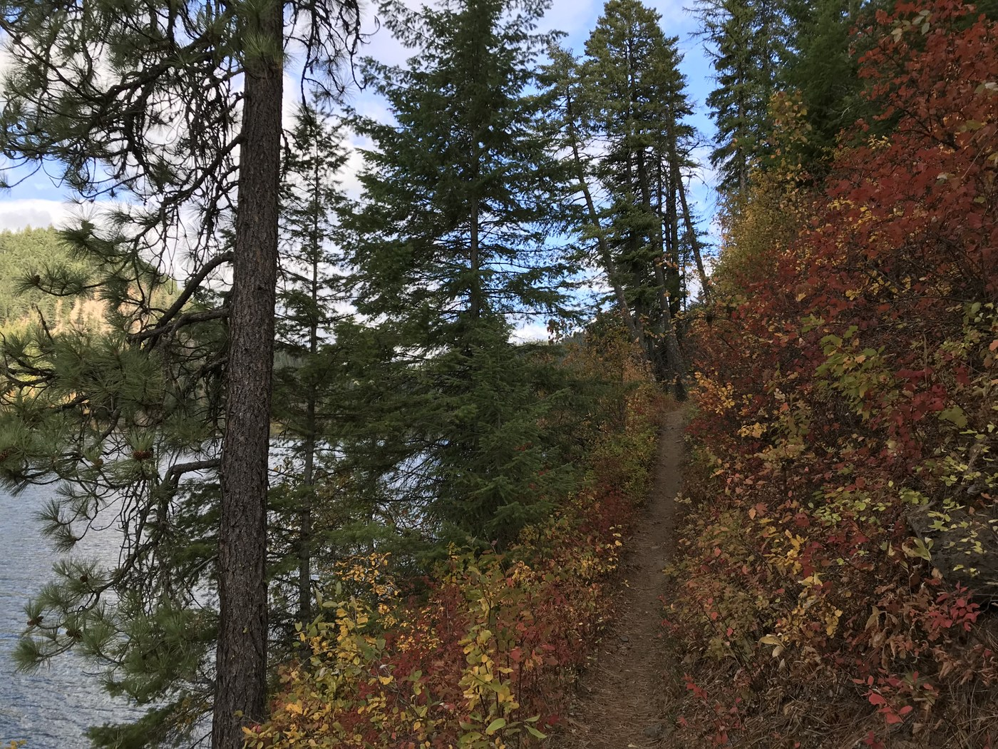 Fall colors surround the Bead Lake trail, the lake itself in the distance.