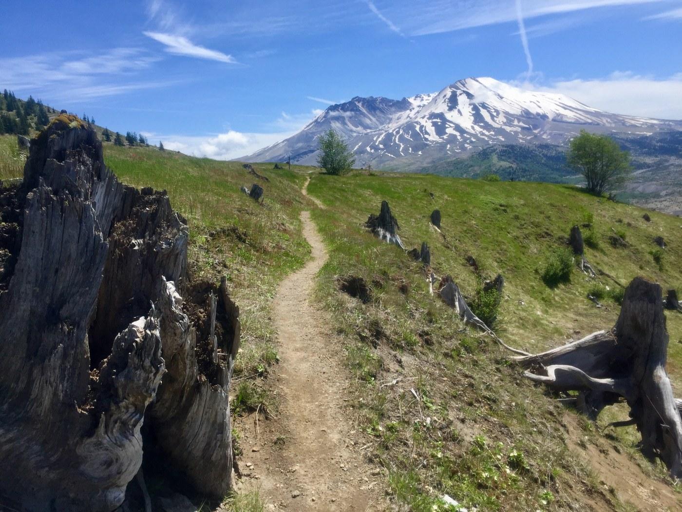 Boundary Trail. Photo Lebunnyman.jpeg
