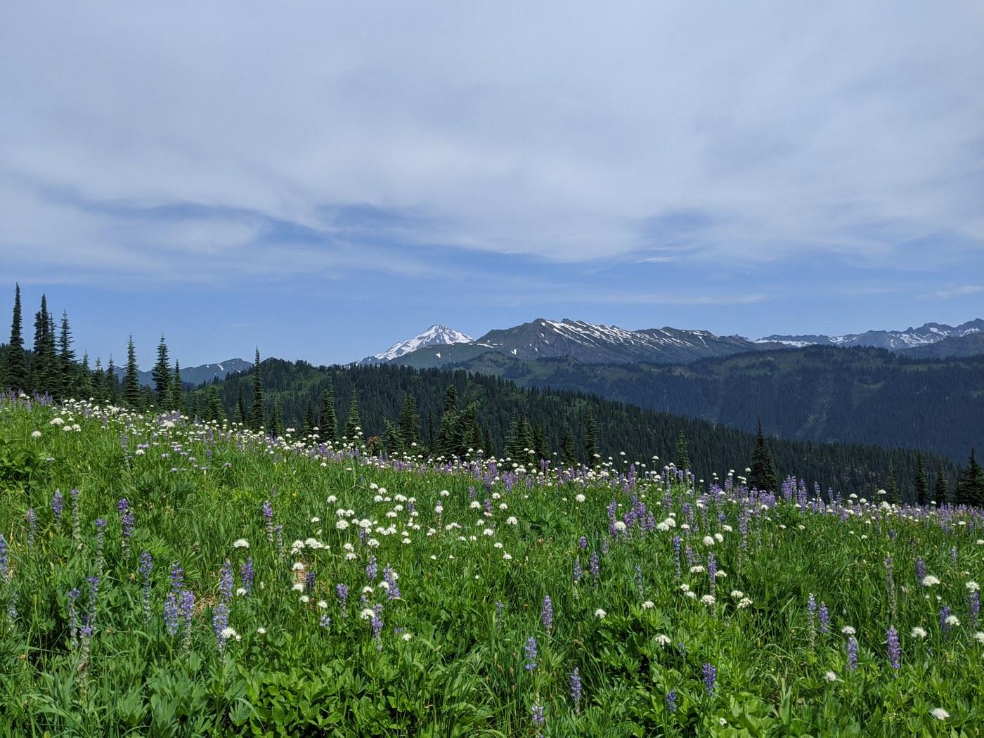 Cady Ridge. Photo by CeliaHarvey.jpeg