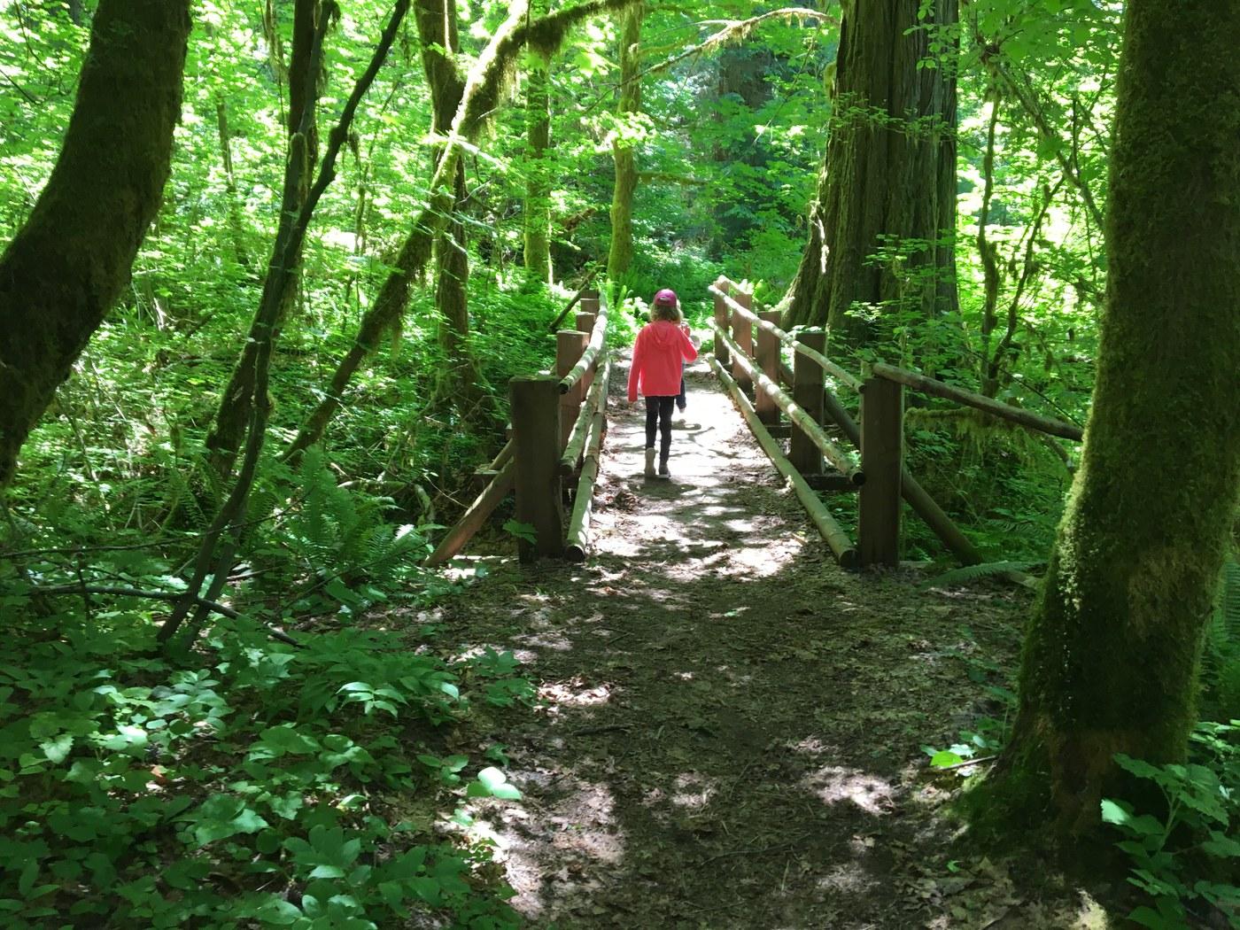 Cedar Flats Nature Trail. Photo by thatchio.jpeg
