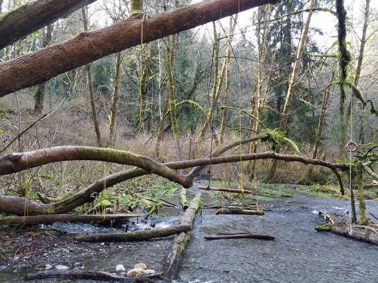 Clark's Creek by Hiking Nerds.jpeg