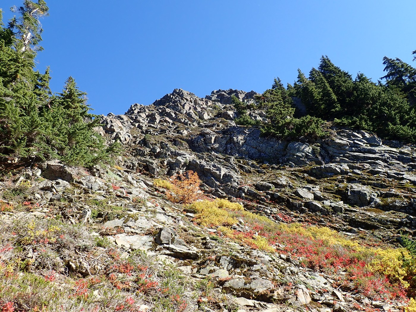 Colorful hillside along the trail. Photo by Suhleenah.