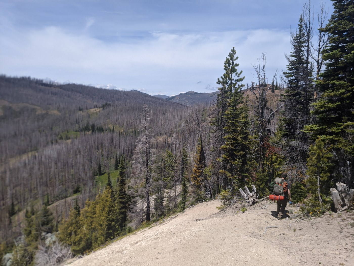 A backpacker heads downhill from a small peak. In the background are hills with patches of meadows and large swaths of burned forest.