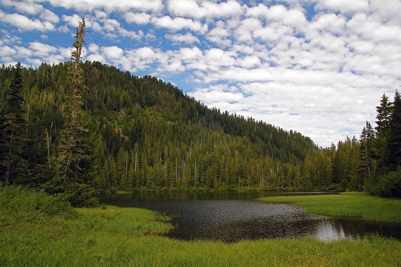 Deer Lake. Photo by Rugosus.jpeg