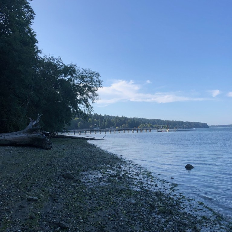 Illahee State Park beach. Photo by cathartes.