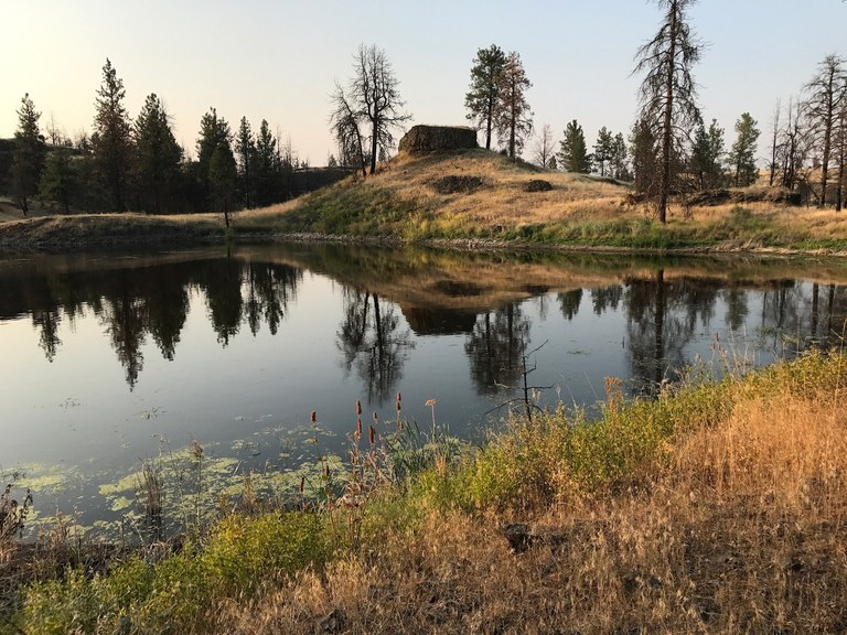 A lake is surrounded by golden grass and few trees. Photo by California Girl