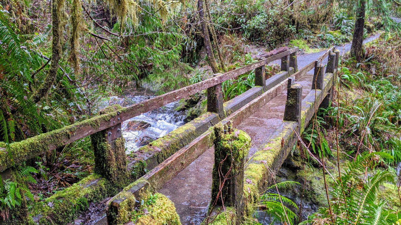 Footbridge over Willaby Creek. Photo by Eric Nagle.
