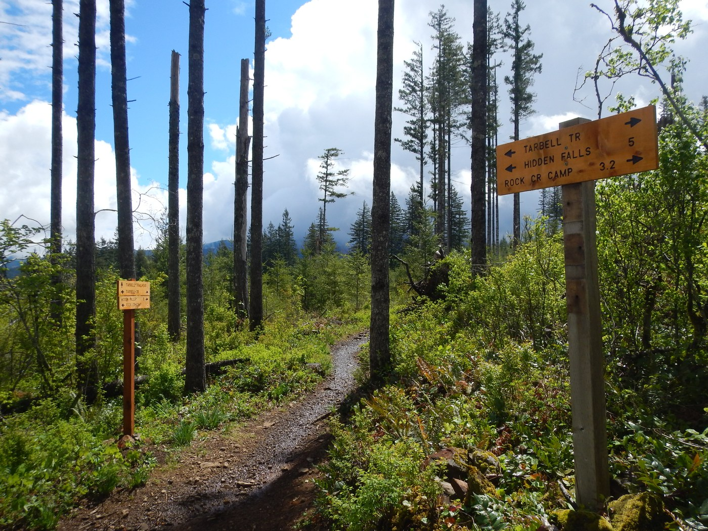 Good signage along the trail. Photo by Anna Roth.