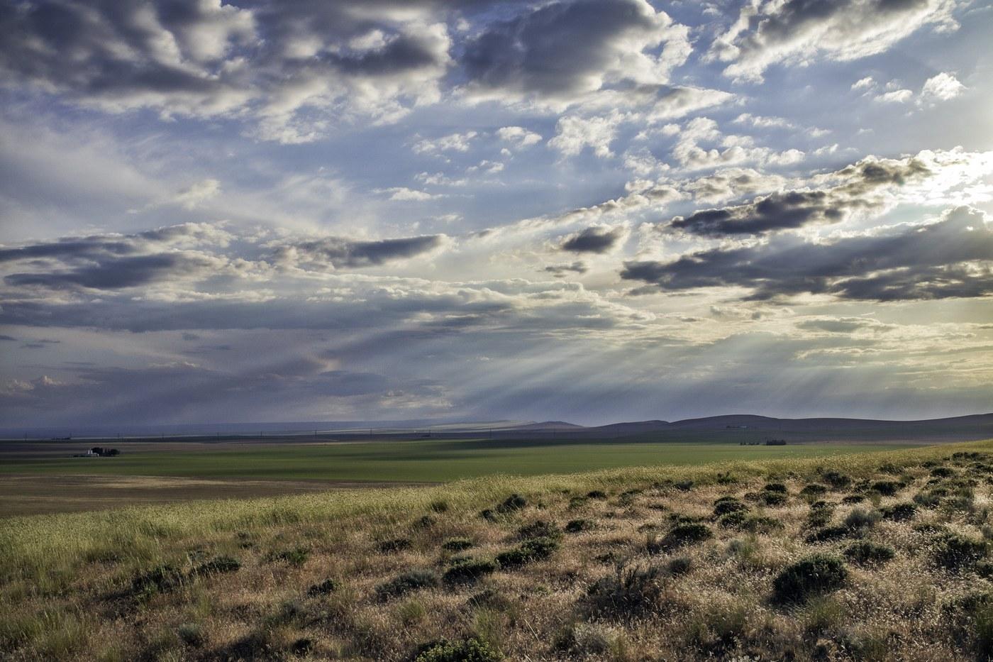 Horse Heaven Hills. Photo by HaroldC3..jpeg