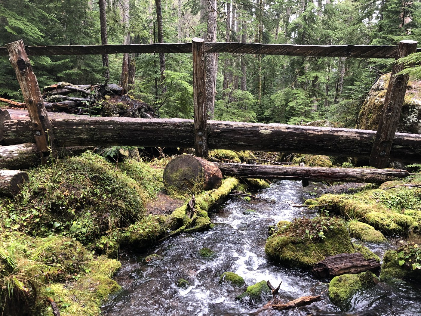 Mossy bridge over a creek on the Lake Angeles Trail. Photo by bzimmer.