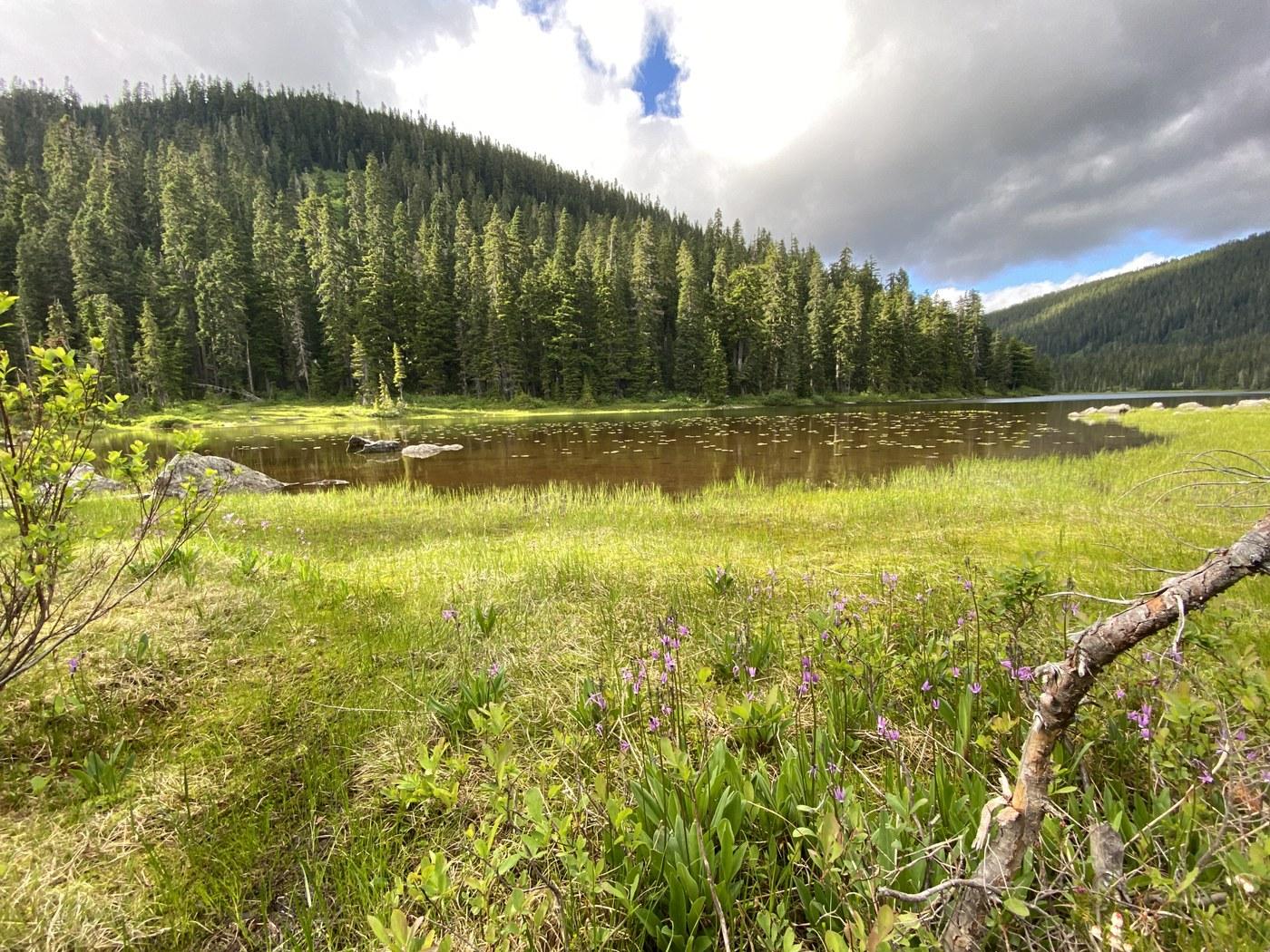 Lake Janus and Grizzly Peak. Photo by cristina.jpeg
