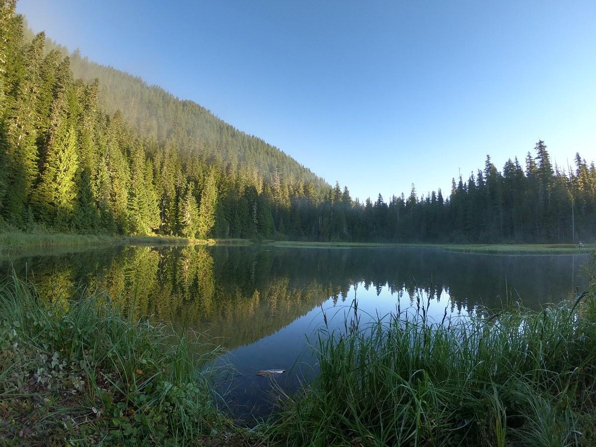 Mink Lake. Photo by Mosquito Food.jpeg