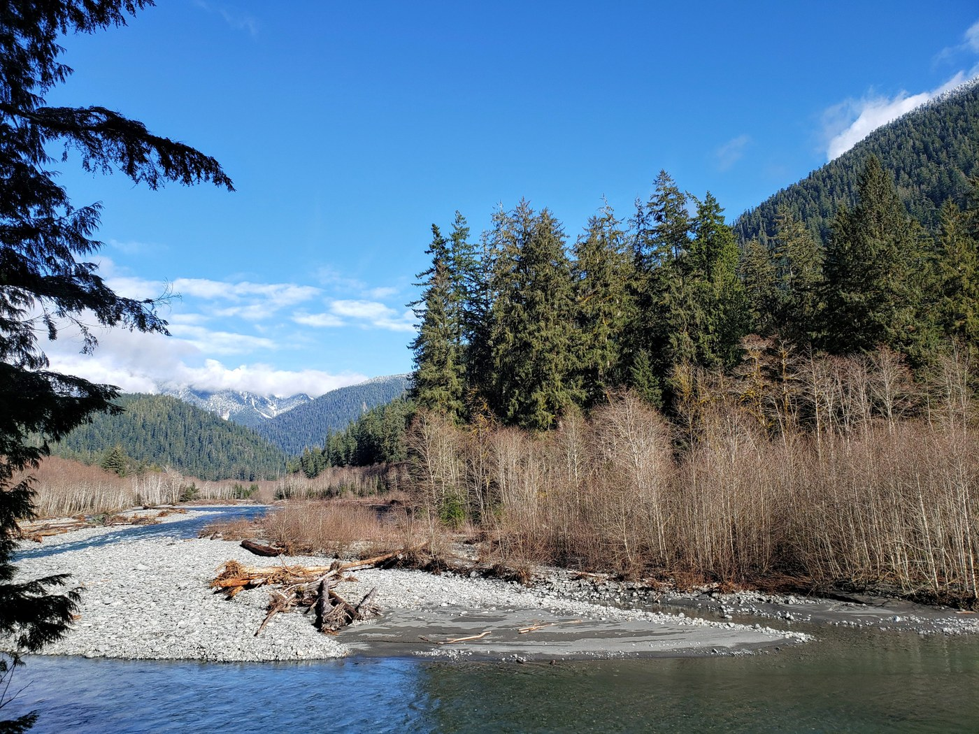 A wide river runs through a rocky bed, with evergreen forest on either side.