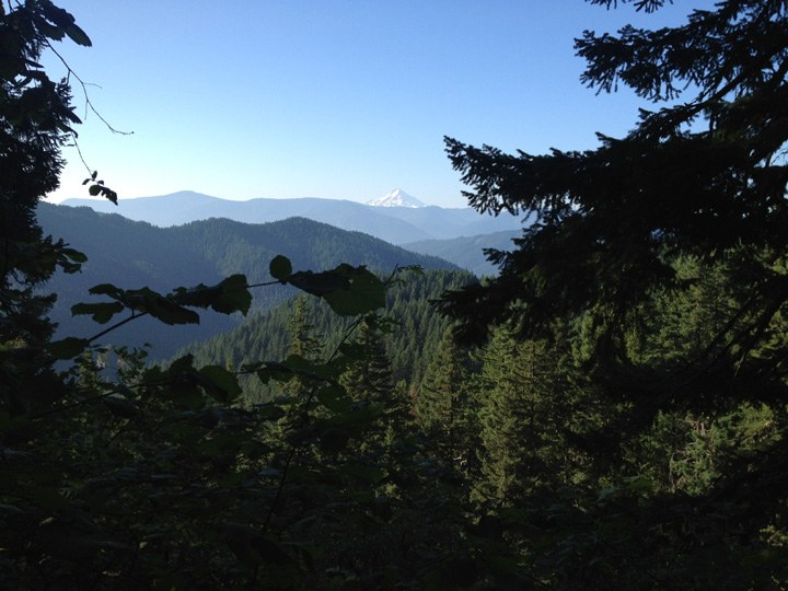 Panther Creek Experimental Forest. Photo by VeganHiker..jpeg
