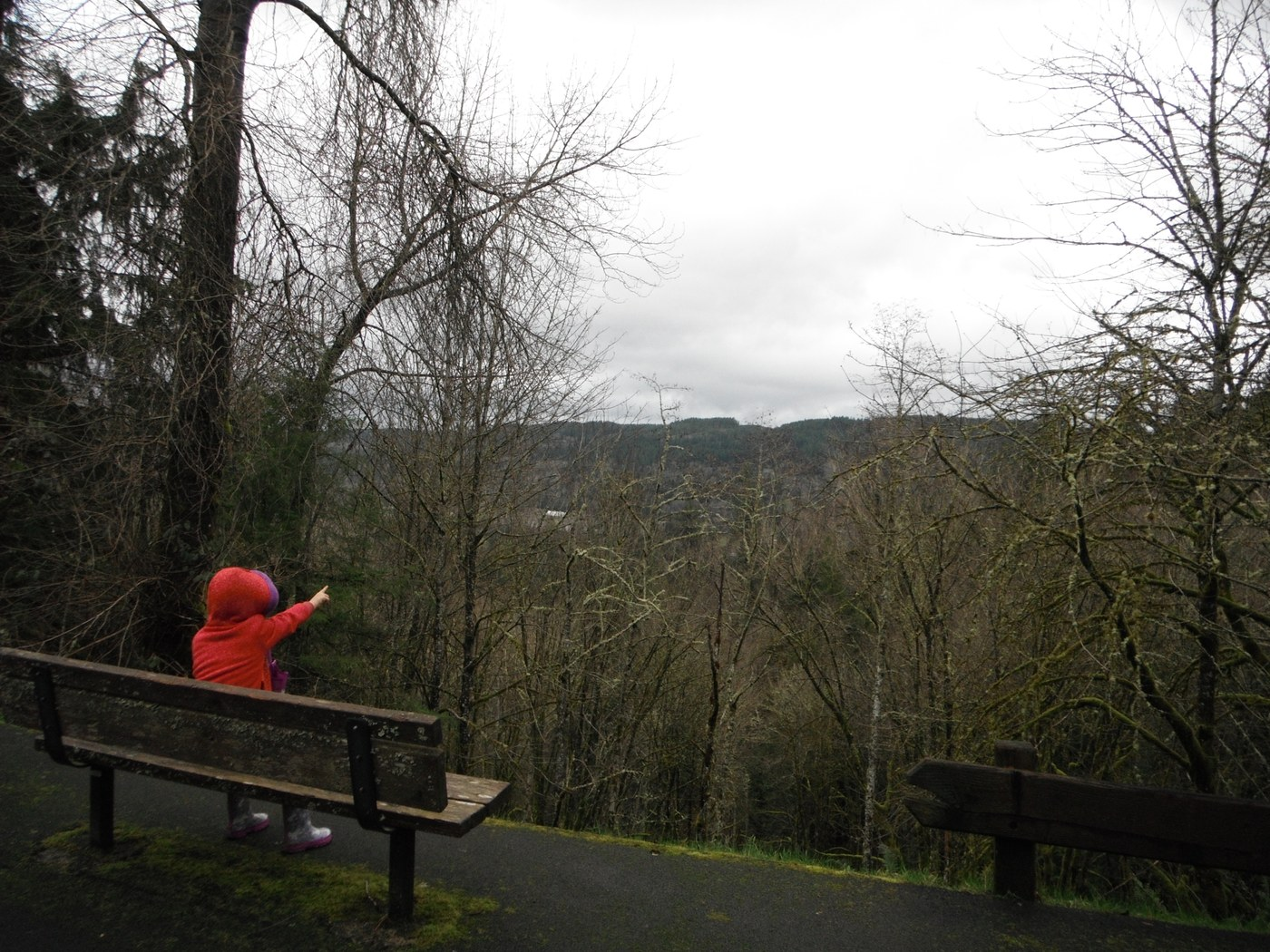 Preston-Snoqualmie Trail. Photo by Ups n Downs.jpeg