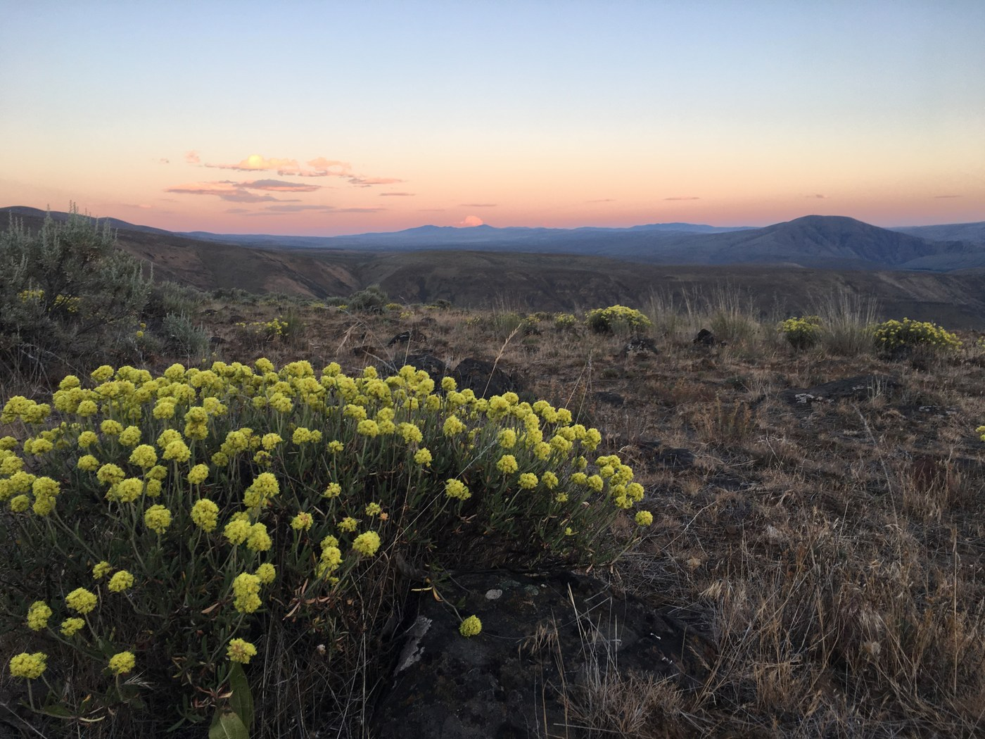 Rattlesnake Dance Ridge at sunset