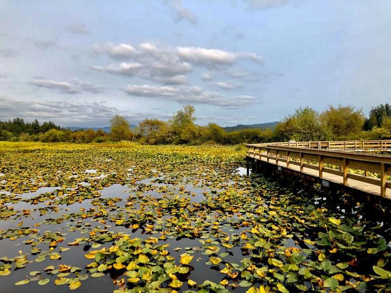 Seaquest State Park-Silver Lake. Photo by Liz M.