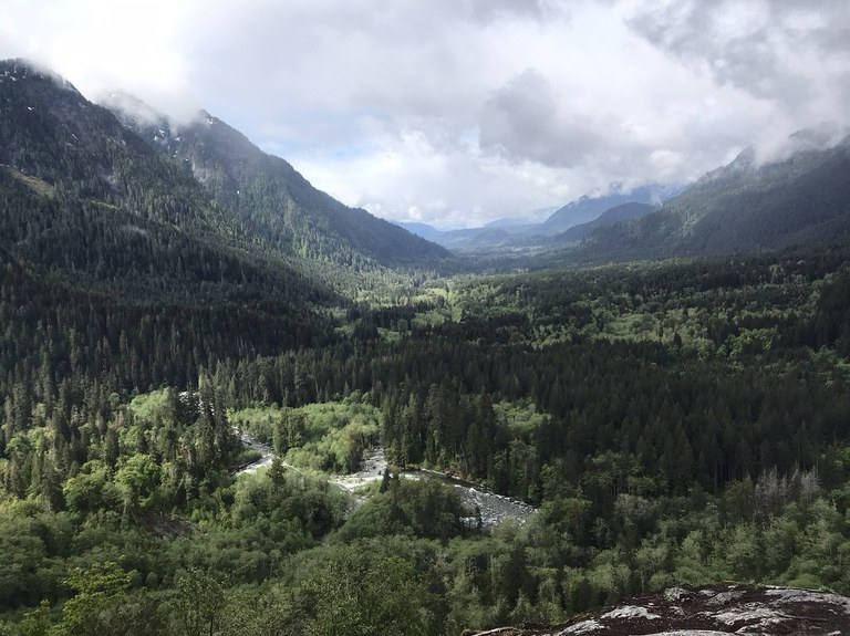 A forested river valley with mountains on both sides.